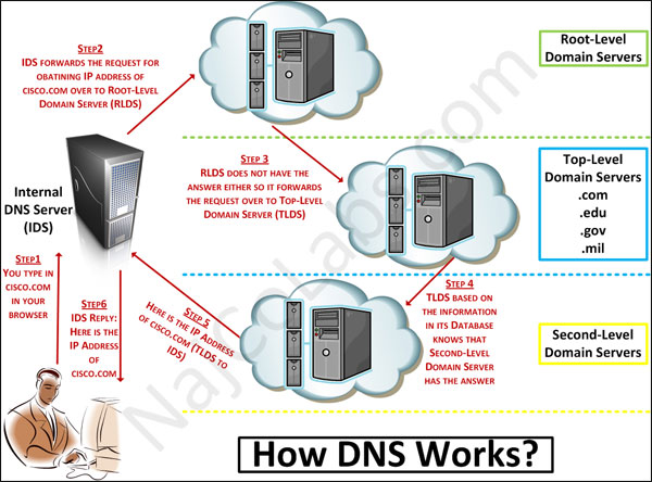 อินเทอร์เน็ต ภาพการทำงานของ DNS
