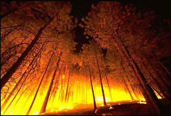 ไฟล้างโลกเริ่มจากเมืองมนุษย์ก่อน