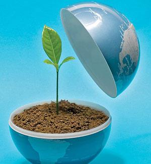 Eco friendly nature essay emerson