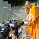 The Meditation Village in Japan arranged a meditation retreat for locals