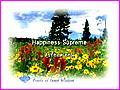 Happiness Supreme